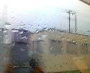 雨ですな。